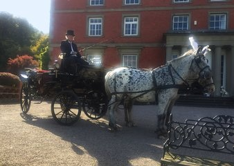 West Midlands Cavalry of Heroes - Horses and Carriages for Weddings and Events Whitney-on-Wye, Hereford
