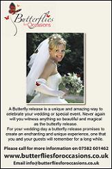 Wedding Entertainment Butterflies for Occasions Butterflies for Occasions New Milton, Hampshire